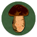 Download Book of Mushrooms 4.4 APK