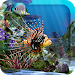 Download 3D Aquarium Live Wallpaper HD 1.3.6 APK