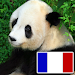 Download Animals in french 13.0 APK