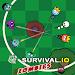 Download Battle Royale.io - Survival Zombie 1.1 APK