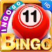 Download Bingo HD - Free Bingo Game 1.01 APK