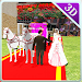 Download City Wedding Horse Carriage 1.01 APK
