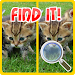 Download Find The Differences Cats 2.03 APK