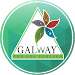 Download Glaze Galway 2.6 APK