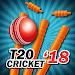 Download T20 Cricket 2018 5.0.2 APK