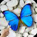 Download Magic Touch: Butterflies 2.0 APK