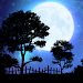 Download Nightfall Live Wallpaper Free 5.0 APK