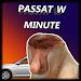 Download Passat w Minute 1.2696 APK