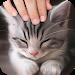 Download Pat the Cat Simulator 1.1 APK