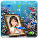 Download Photo Aquarium Live Wallpaper 1.0.8 APK