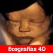 Download Pregnancy by week 12 APK