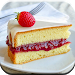 Download Sponge Cake Recipes 2.4.1 APK