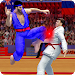 Download Tag Team Karate Fighting Tiger: World Kung Fu King 1.7.1 APK