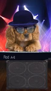 Download Talking puppy  APK