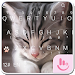 Download TouchPal Cats Keyboard Theme 6.8.18.2018 APK